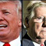Report: McConnell, Trump Relationship 'Disintegrated,' Have Not Spoken In Weeks After 'Shouting Match' Phone Call