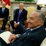 Democrats: Donald Trump's Debt Concession Helps Amnesty Push
