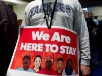immigrant DACA donald trump
